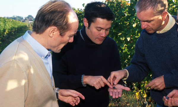 F-Xavier de Saint-Exupéry and two oenologists, Frédéric Mignot and Jean-Marc Dournel, tasting the ripeness of the grapes.